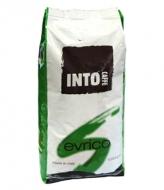 Into Caffe Evrico (Инто Каффе Эврико), кофе в зернах (1кг), вакуумная упаковка